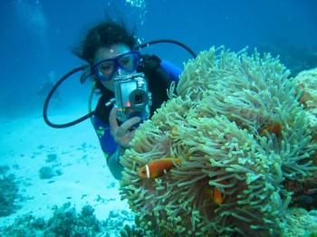 Vilu Reef Taucherin