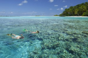 Schnorcheln, Foto: © Holiday Inn Resort Kandooma Maldives