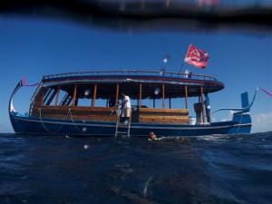 Tauchdohni, Foto: © Euro-Divers