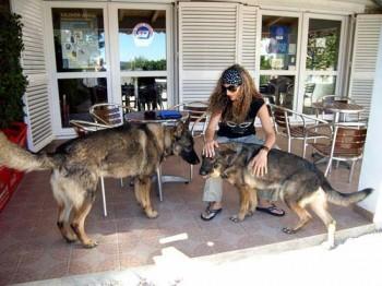 Hundezone in Kroatien