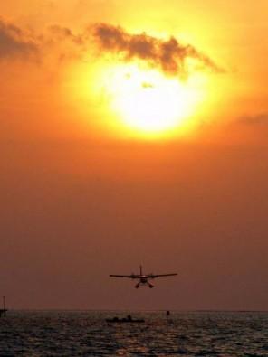 Im Sonnenuntergang, Foto: G. Nowak