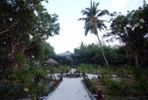 Grüne Insel, Foto: @ Adaaran Prestige Vadoo