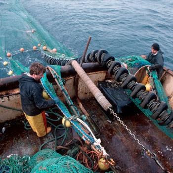 Schleppnetzfischerei