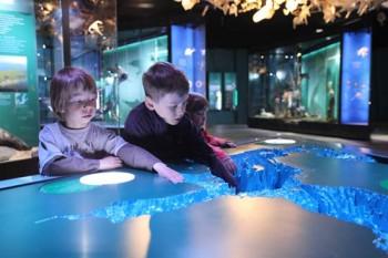 Ostsee-Ausstellung im Ozeaneum