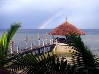 Dolphin House Cebu