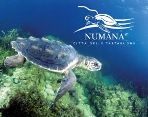 Numana – Stadt der Schildkröten