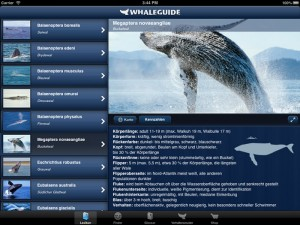 Whaleguide-App