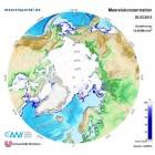 Meereiskonzentration in der Arktis am 20.03.2015