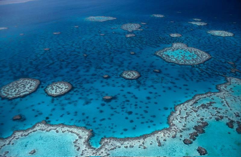 Great Barrier Riff, Foto: © Jürgen Freund/WWF Canon