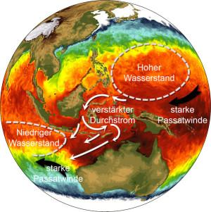 Schematische Darstellung der Wasserstandsänderungen