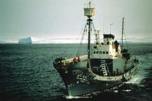 Japanisches Walfangboot in der Antarktis