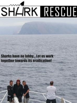 """Filmprojekt """"Shark Rescue"""""""