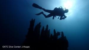 Tauchen im Meeresschutzgebiet