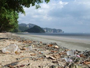 Plastikverschmutzung der Meere