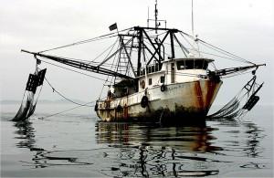 Illegaler Trawler