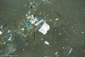 Plastikmüll und Abfall