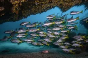 Boa Vista unter Wasser,
