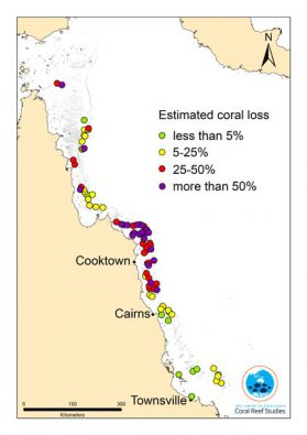 geschätzte Korallen-Verluste