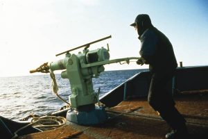 Harpune für den Walfang