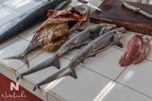 Babyhaie auf dem Fischmarkt
