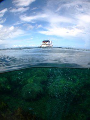 Riff von Milne Bay
