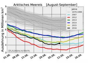 Sommerliche Meereisfläche in der Arktis