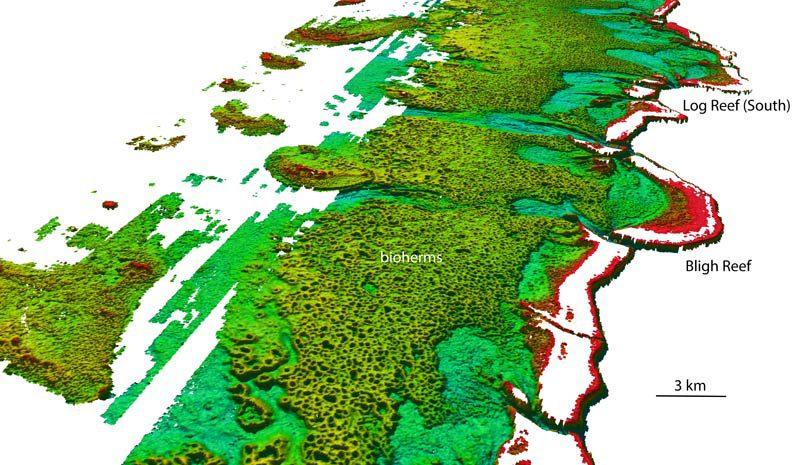 Nordwestliche Ansicht auf das Bligh Reef vor Cape York