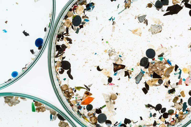 Mikroplastik
