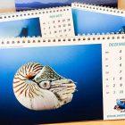 Werner-Lau-Tischkalender