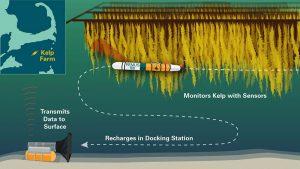 autonomes Unterwasser-Beobachtungssystem